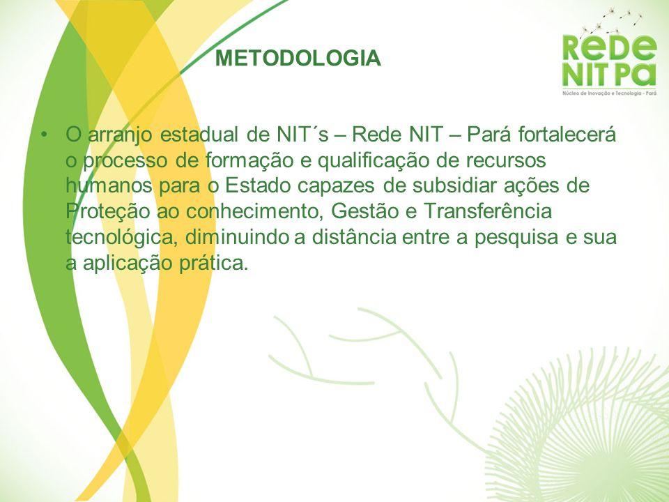 O arranjo estadual de NIT´s – Rede NIT – Pará fortalecerá o processo de formação e qualificação de recursos humanos para o Estado capazes de subsidiar