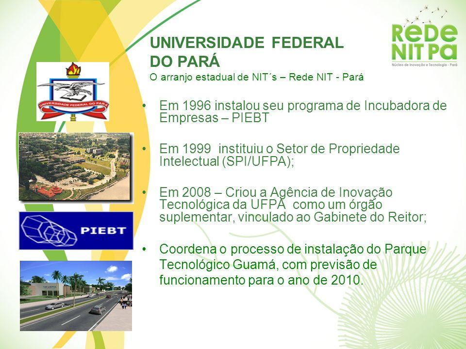 UNIVERSIDADE FEDERAL DO PARÁ O arranjo estadual de NIT´s – Rede NIT - Pará Em 1996 instalou seu programa de Incubadora de Empresas – PIEBT Em 1999 ins