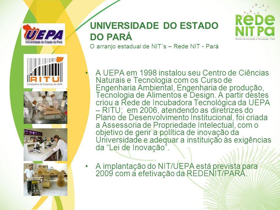 UNIVERSIDADE DO ESTADO DO PARÁ O arranjo estadual de NIT´s – Rede NIT - Pará A UEPA em 1998 instalou seu Centro de Ciências Naturais e Tecnologia com