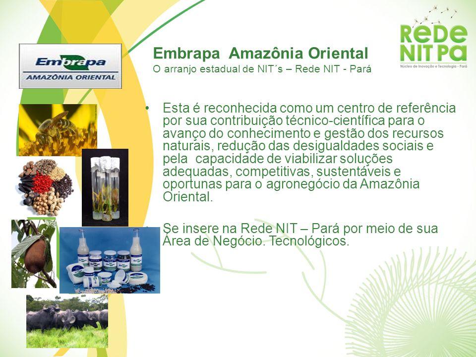 Embrapa Amazônia Oriental O arranjo estadual de NIT´s – Rede NIT - Pará Esta é reconhecida como um centro de referência por sua contribuição técnico-c