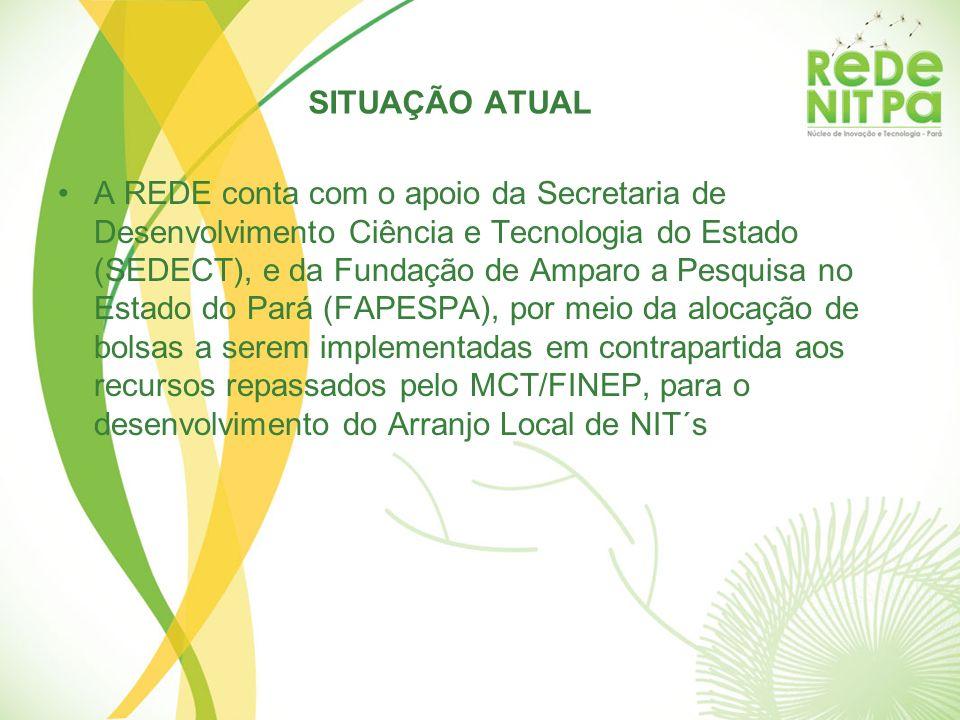 SITUAÇÃO ATUAL A REDE conta com o apoio da Secretaria de Desenvolvimento Ciência e Tecnologia do Estado (SEDECT), e da Fundação de Amparo a Pesquisa n