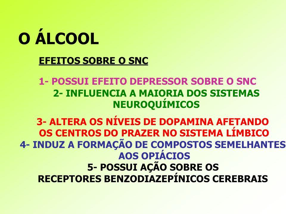 O ÁLCOOL 1- POSSUI EFEITO DEPRESSOR SOBRE O SNC 2- INFLUENCIA A MAIORIA DOS SISTEMAS NEUROQUÍMICOS 3- ALTERA OS NÍVEIS DE DOPAMINA AFETANDO OS CENTROS