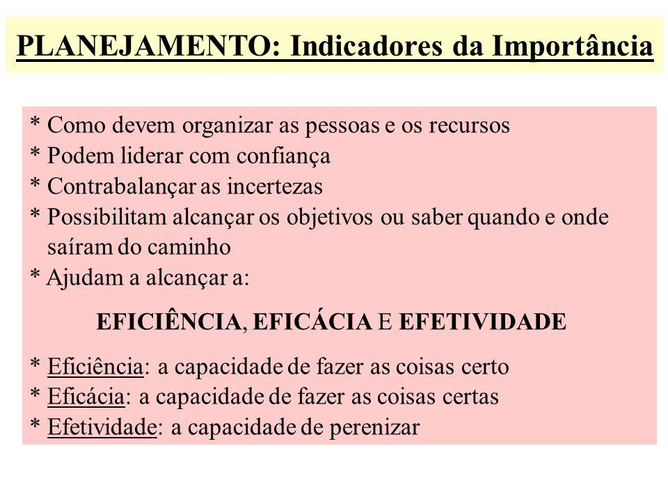 PLANEJAMENTO: Indicadores da Importância * Como devem organizar as pessoas e os recursos * Podem liderar com confiança * Contrabalançar as incertezas
