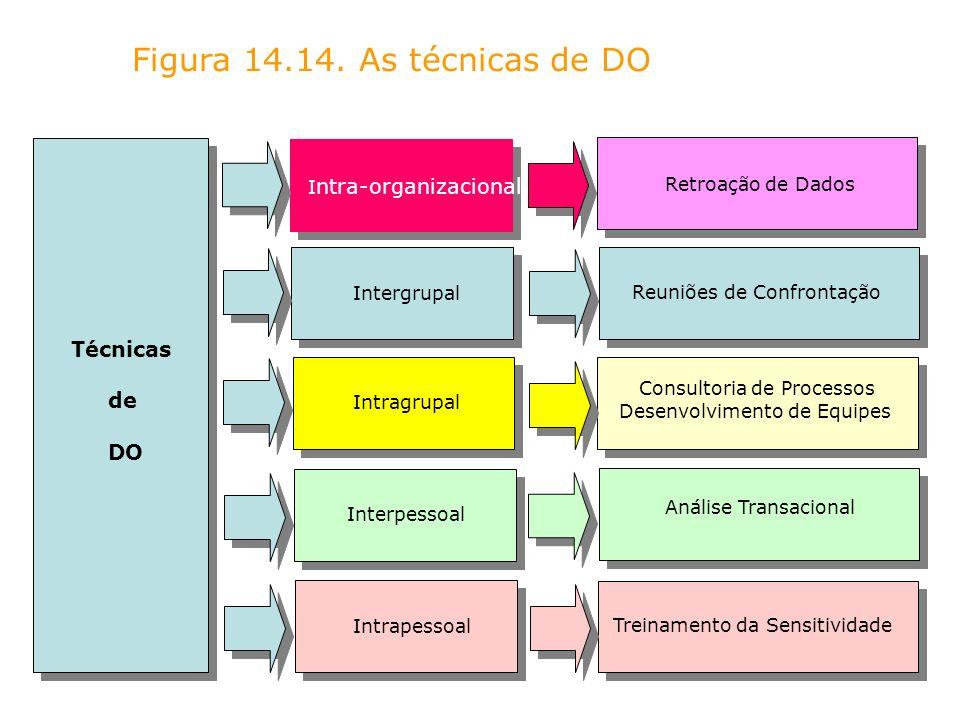 Figura 14.14. As técnicas de DO Técnicas de DO I ntra-organizacional Intergrupal Intragrupal Interpessoal Intrapessoal Retroação de Dados Reuniões de
