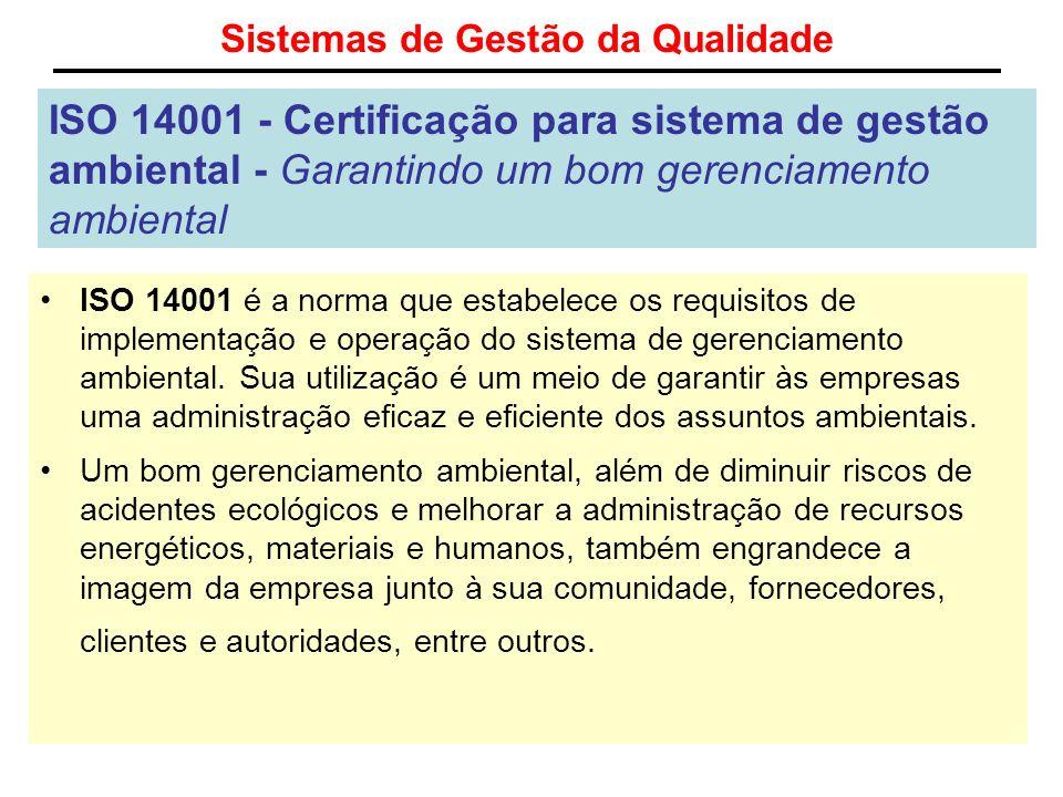 Sistemas de Gestão da Qualidade ISO 14001 - Certificação para sistema de gestão ambiental - Garantindo um bom gerenciamento ambiental ISO 14001 é a no