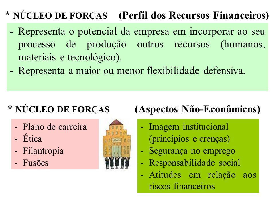 * NÚCLEO DE FORÇAS (Perfil dos Recursos Financeiros) -Representa o potencial da empresa em incorporar ao seu processo de produção outros recursos (hum