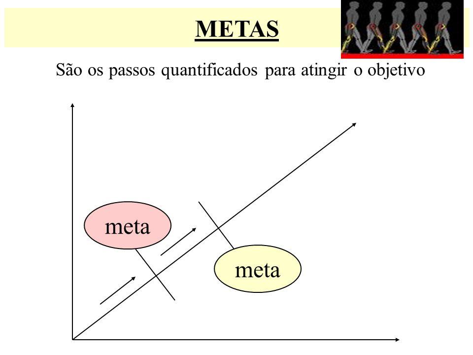 METAS São os passos quantificados para atingir o objetivo meta