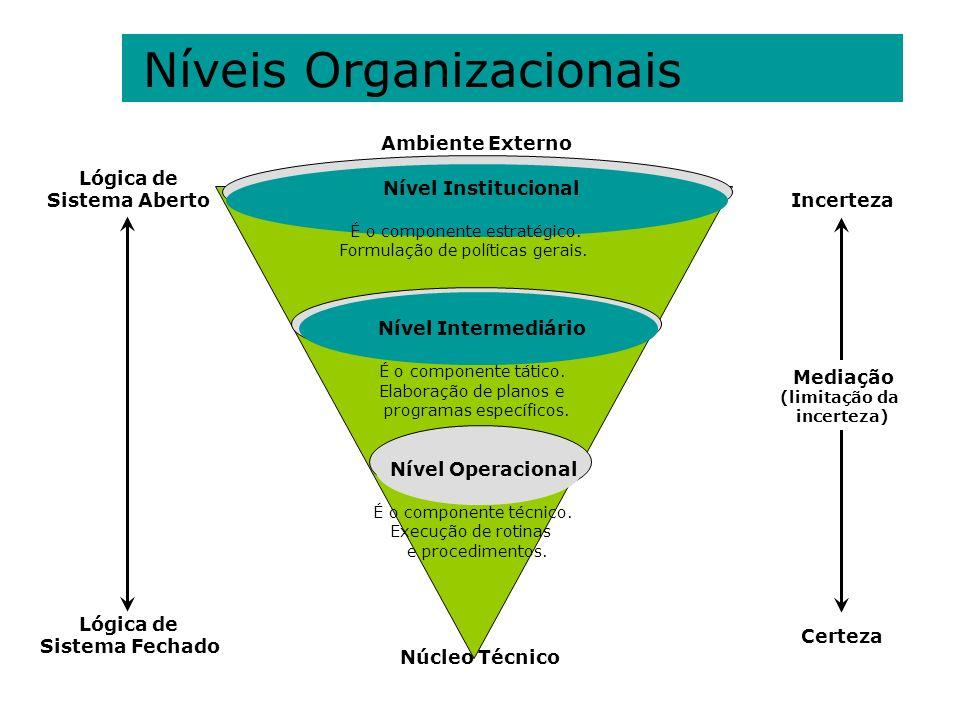 Níveis Organizacionais Ambiente Externo Nível Institucional É o componente estratégico. Formulação de políticas gerais. Nível Intermediário É o compon