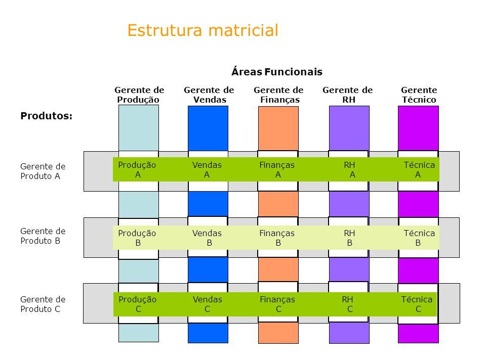 Estrutura matricial Produção Vendas Finanças RH Técnica A A A A A Produção Vendas Finanças RH Técnica B B B B B Produção Vendas Finanças RH Técnica C