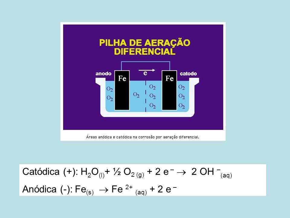 Catódica (+): H 2 O (l) + ½ O 2 (g) + 2 e – 2 OH – (aq) Anódica (-): Fe (s) Fe 2+ (aq) + 2 e –