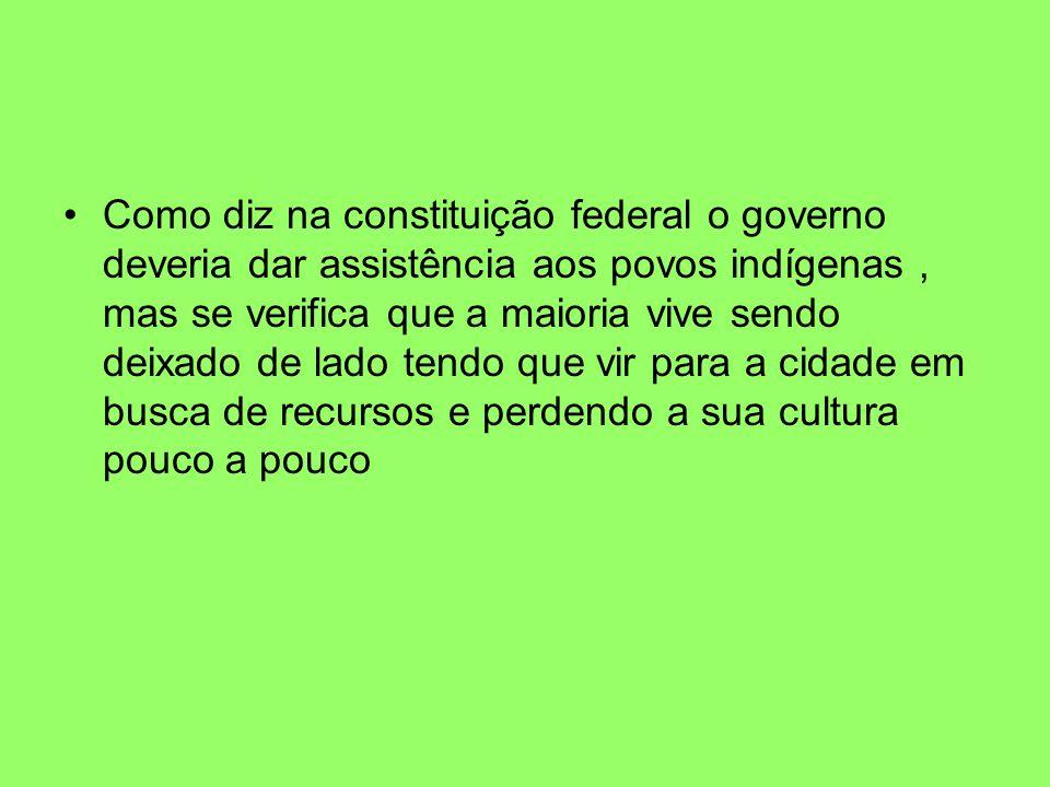 Como diz na constituição federal o governo deveria dar assistência aos povos indígenas, mas se verifica que a maioria vive sendo deixado de lado tendo