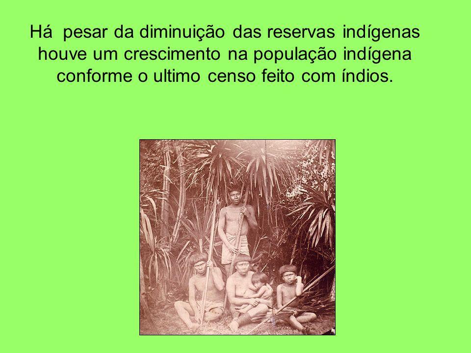 Há pesar da diminuição das reservas indígenas houve um crescimento na população indígena conforme o ultimo censo feito com índios.