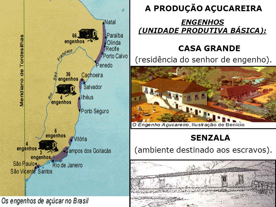A PRODUÇÃO AÇUCAREIRA ENGENHOS (UNIDADE PRODUTIVA BÁSICA): CASA GRANDE SENZALA (residência do senhor de engenho). (ambiente destinado aos escravos).