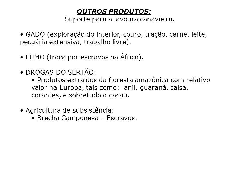 OUTROS PRODUTOS: Suporte para a lavoura canavieira. GADO (exploração do interior, couro, tração, carne, leite, pecuária extensiva, trabalho livre). FU