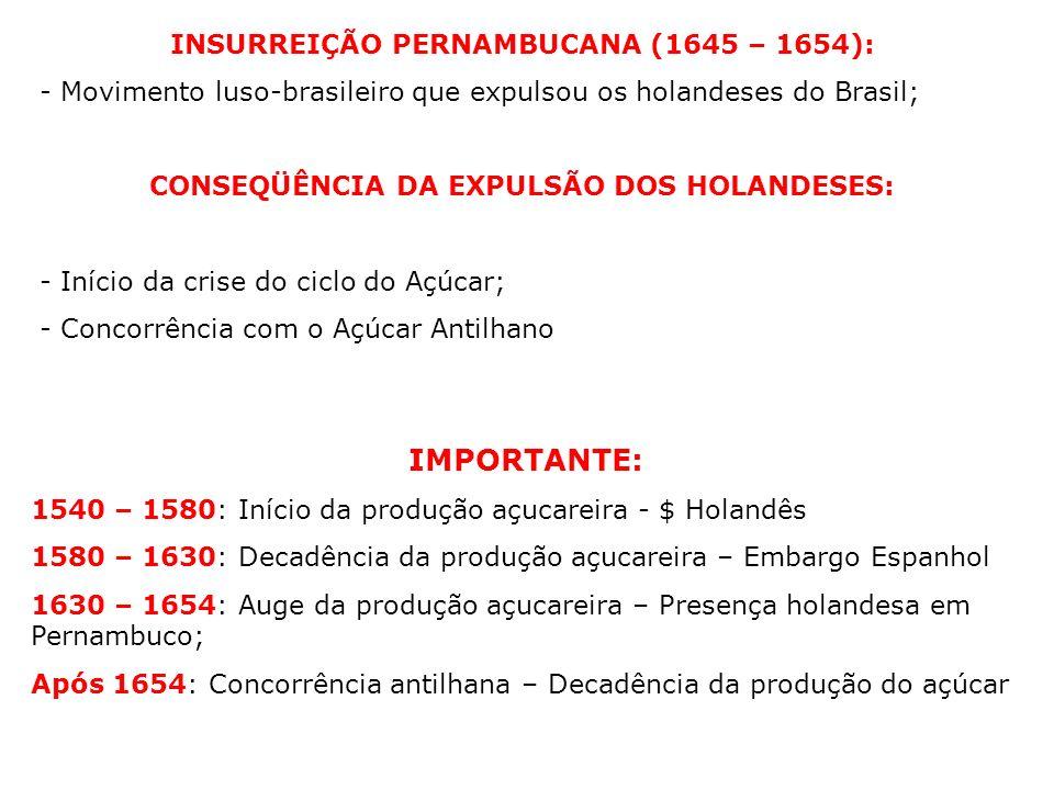 INSURREIÇÃO PERNAMBUCANA (1645 – 1654): - Movimento luso-brasileiro que expulsou os holandeses do Brasil; CONSEQÜÊNCIA DA EXPULSÃO DOS HOLANDESES: - I