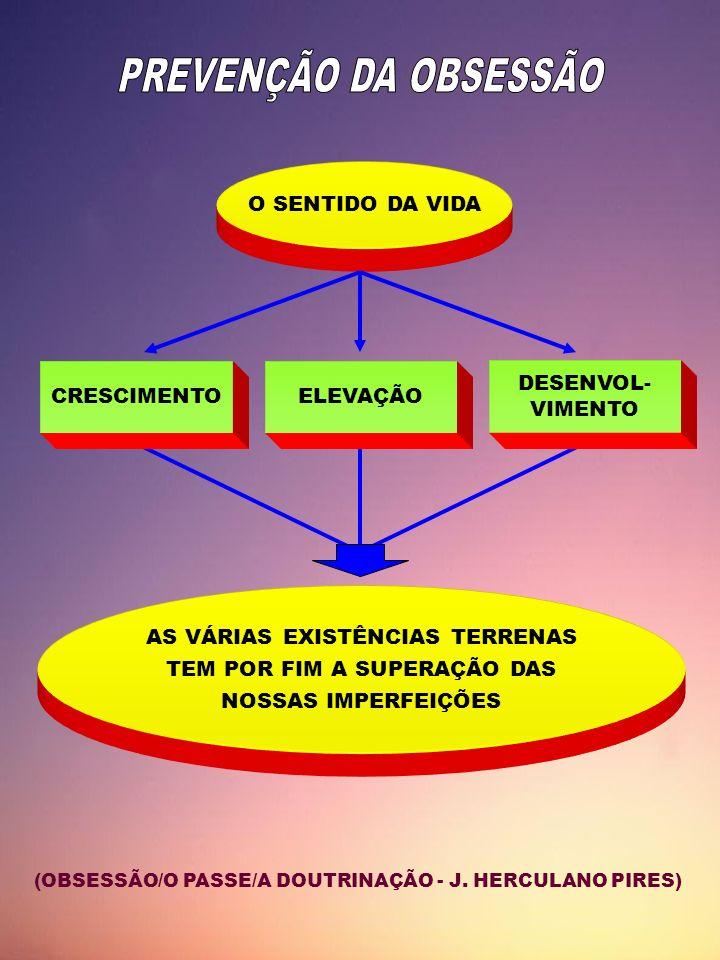 O SENTIDO DA VIDA CRESCIMENTOELEVAÇÃO DESENVOL- VIMENTO AS VÁRIAS EXISTÊNCIAS TERRENAS TEM POR FIM A SUPERAÇÃO DAS NOSSAS IMPERFEIÇÕES (OBSESSÃO/O PAS