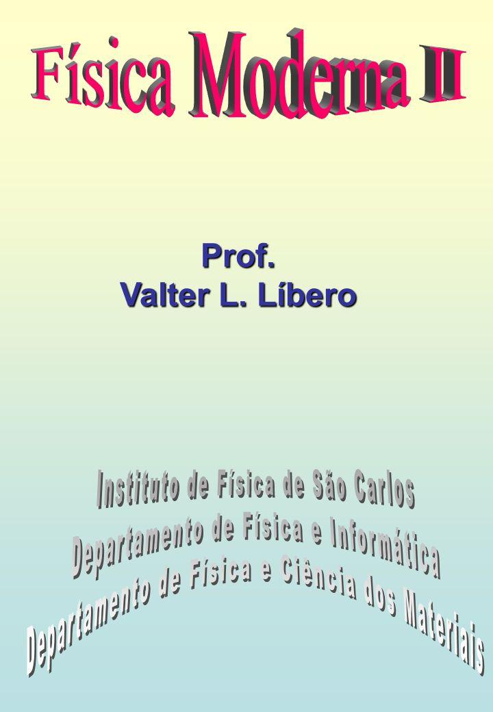 Prof. Valter L. Líbero