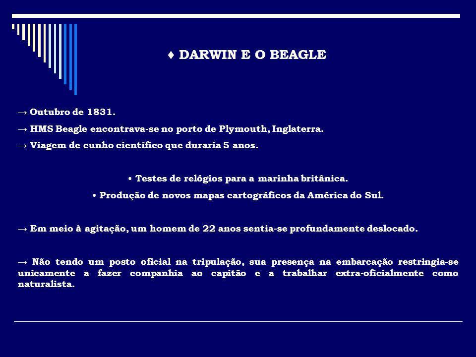 DARWIN E O BEAGLE Outubro de 1831. HMS Beagle encontrava-se no porto de Plymouth, Inglaterra. Viagem de cunho científico que duraria 5 anos. Testes de