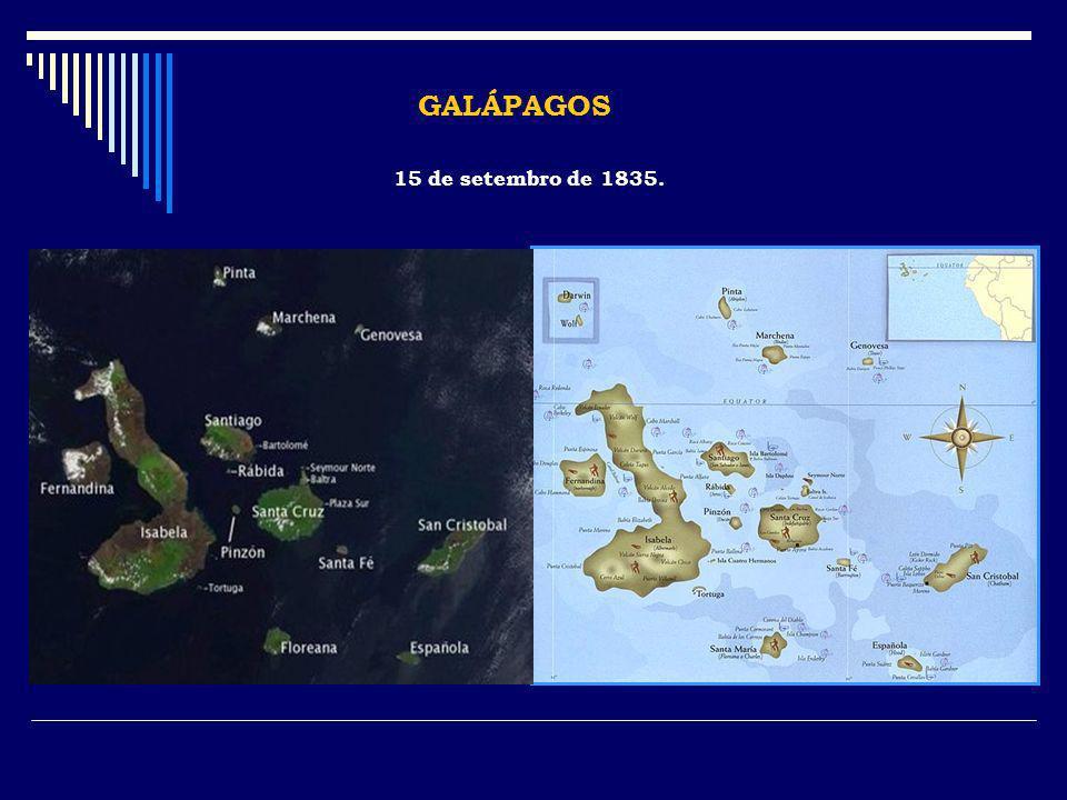 GALÁPAGOS 15 de setembro de 1835.
