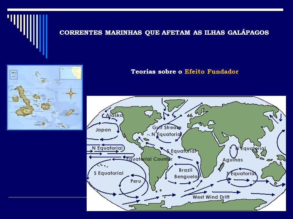 CORRENTES MARINHAS QUE AFETAM AS ILHAS GALÁPAGOS Teorias sobre o Efeito Fundador