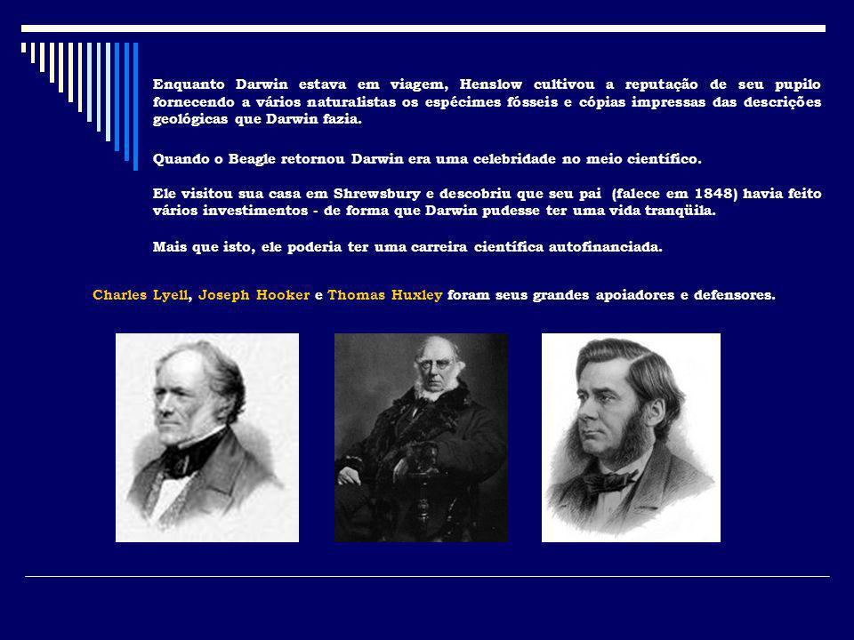 Enquanto Darwin estava em viagem, Henslow cultivou a reputação de seu pupilo fornecendo a vários naturalistas os espécimes fósseis e cópias impressas