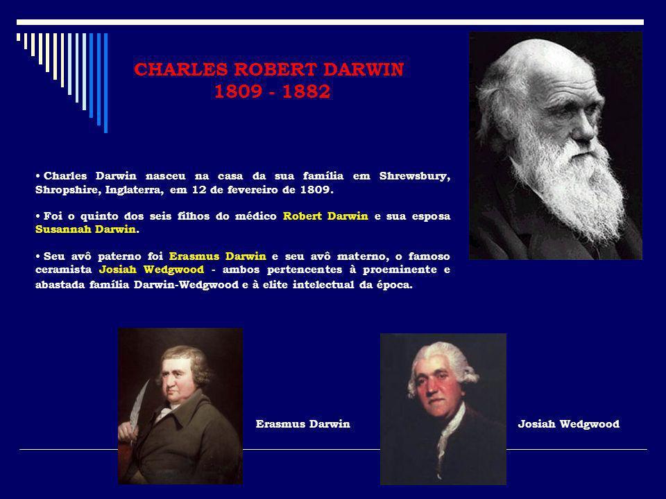 CHARLES ROBERT DARWIN 1809 - 1882 Charles Darwin nasceu na casa da sua família em Shrewsbury, Shropshire, Inglaterra, em 12 de fevereiro de 1809. Foi