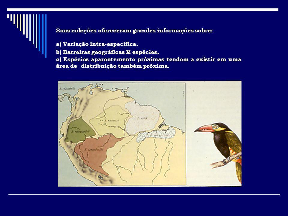 Suas coleções ofereceram grandes informações sobre: a) Variação intra-específica. b) Barreiras geográficas x espécies. c) Espécies aparentemente próxi