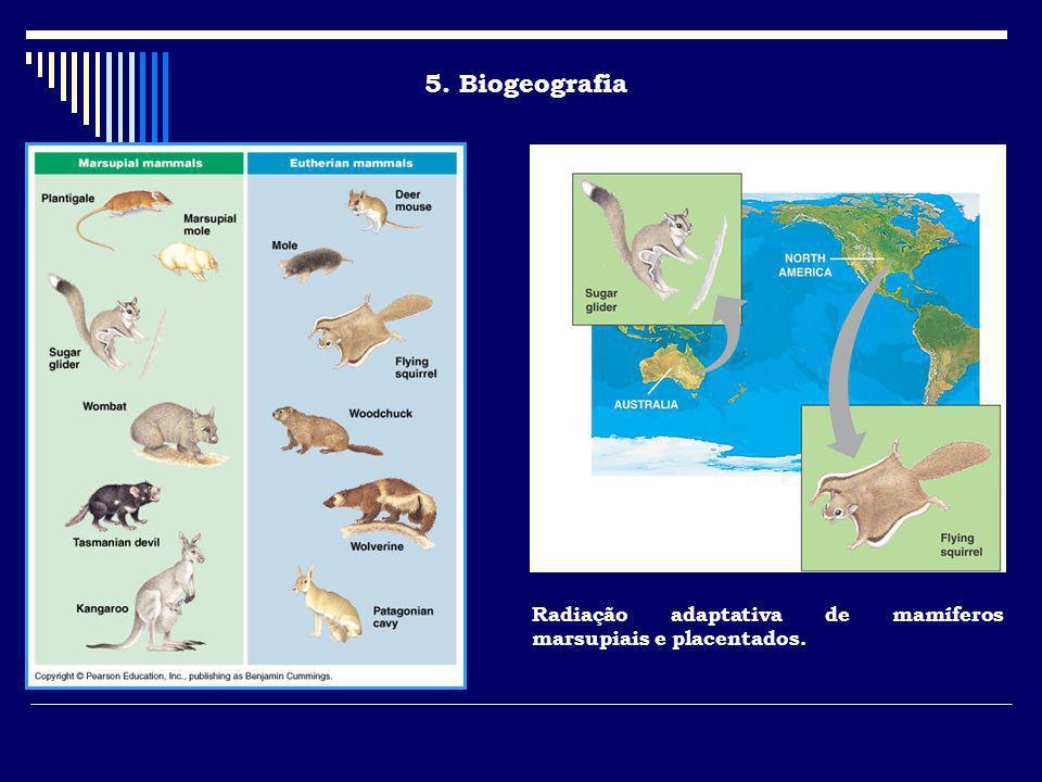 5. Biogeografia Radiação adaptativa de mamíferos marsupiais e placentados.