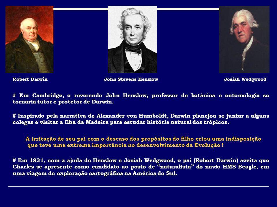 # Em 1831, com a ajuda de Henslow e Josiah Wedgwood, o pai (Robert Darwin) aceita que Charles se apresente como candidato ao posto de naturalista do n