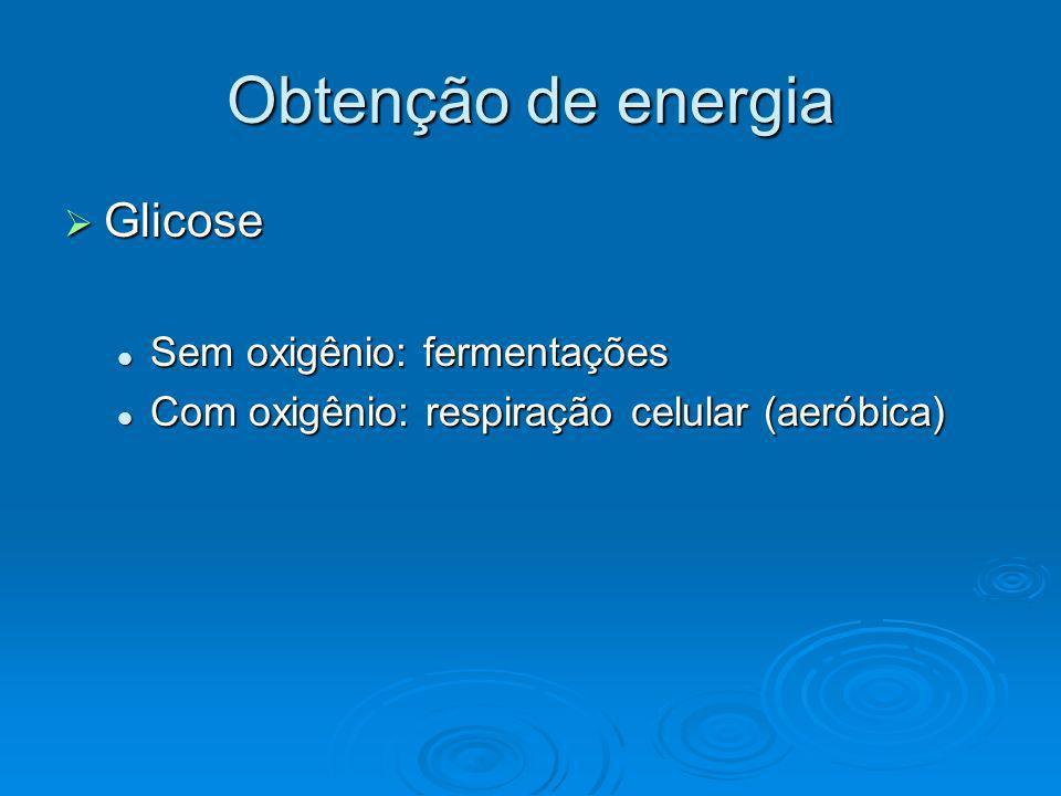 Obtenção de energia Glicose Glicose Sem oxigênio: fermentações Sem oxigênio: fermentações Com oxigênio: respiração celular (aeróbica) Com oxigênio: re