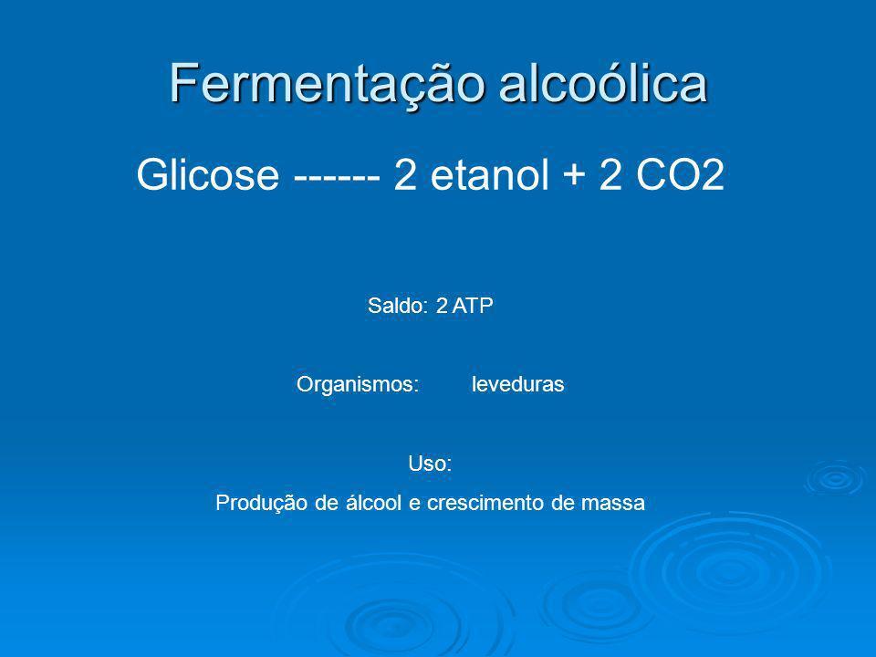 Fermentação alcoólica Glicose ------ 2 etanol + 2 CO2 Saldo: 2 ATP Organismos: leveduras Uso: Produção de álcool e crescimento de massa