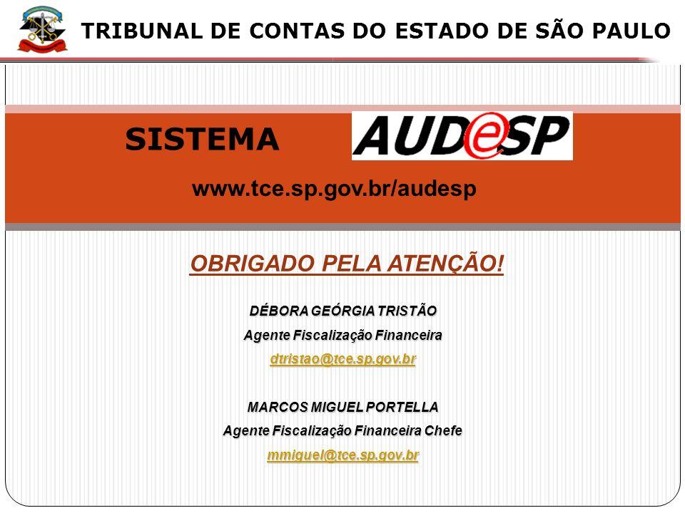 XX X X OBRIGADO PELA ATENÇÃO! TRIBUNAL DE CONTAS DO ESTADO DE SÃO PAULO DÉBORA GEÓRGIA TRISTÃO Agente Fiscalização Financeira dtristao@tce.sp.gov.br M