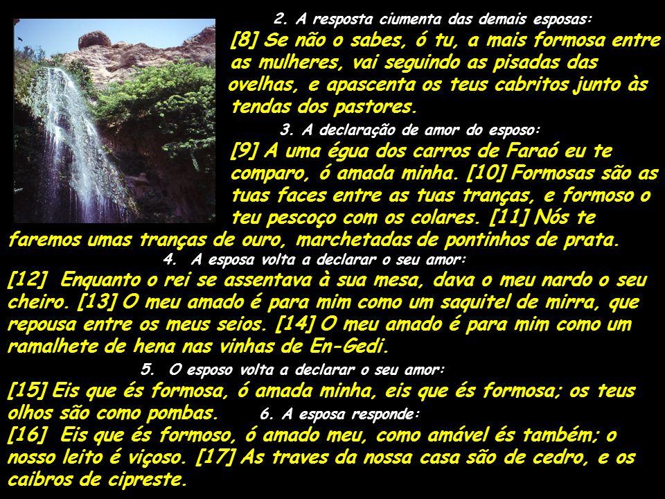2. A resposta ciumenta das demais esposas: [8] Se não o sabes, ó tu, a mais formosa entre as mulheres, vai seguindo as pisadas das ovelhas, e apascent