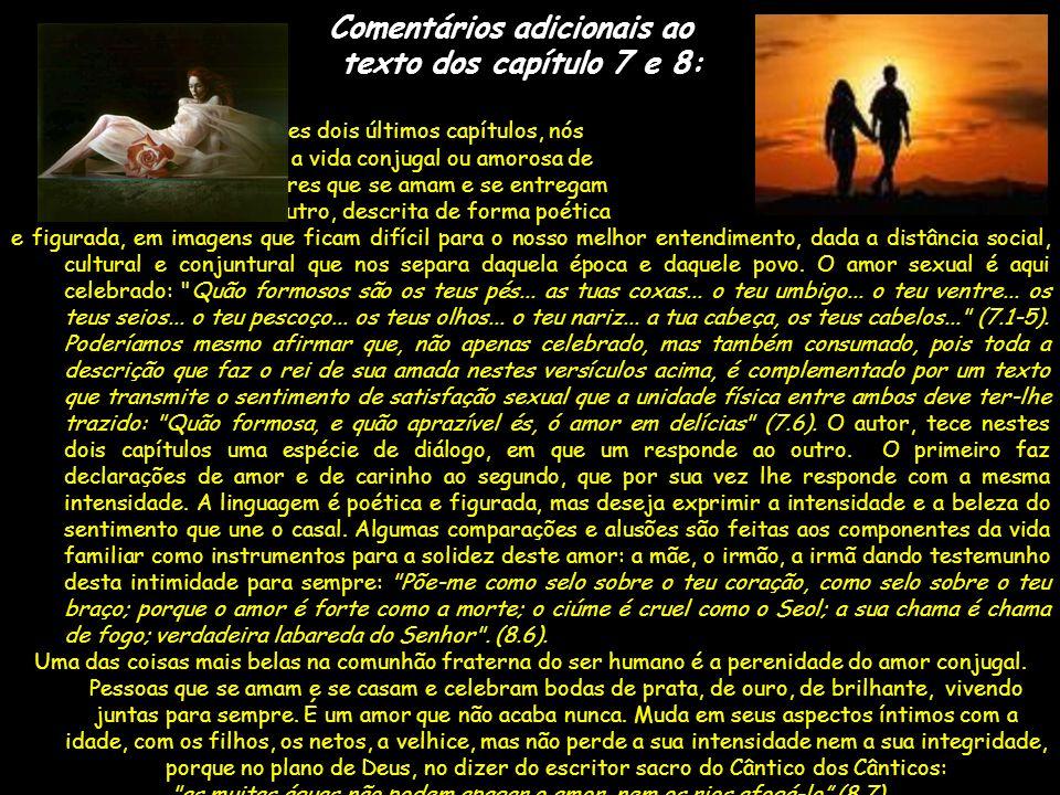 Comentários adicionais ao texto dos capítulo 7 e 8: Nestes dois últimos capítulos, nós temos a vida conjugal ou amorosa de dois seres que se amam e se