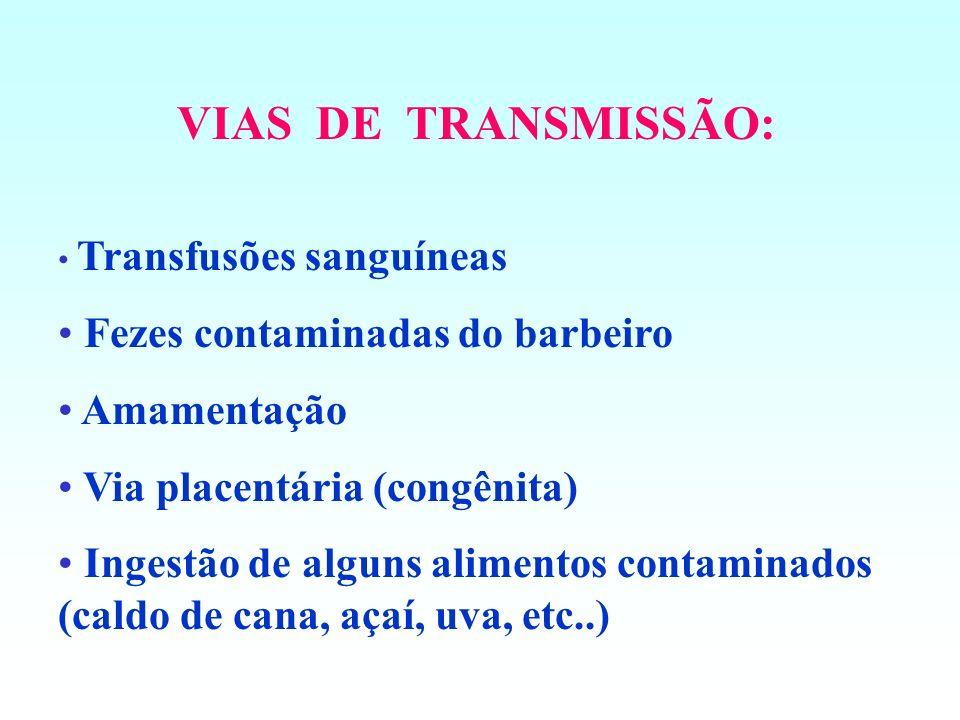 Vetor: Anopheles sp. (mosquito prego)