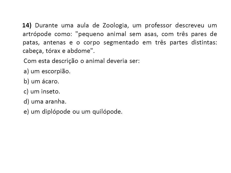 14) Durante uma aula de Zoologia, um professor descreveu um artrópode como: