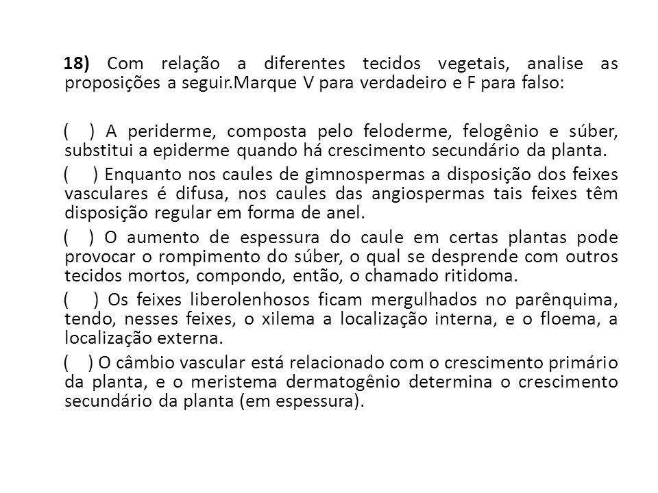 18) Com relação a diferentes tecidos vegetais, analise as proposições a seguir.Marque V para verdadeiro e F para falso: ( ) A periderme, composta pelo