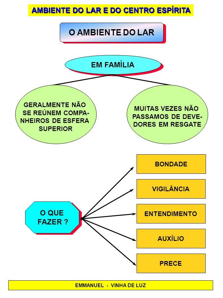 O AMBIENTE DO LAR EM FAMÍLIA O QUE FAZER ? O QUE FAZER ? AMBIENTE DO LAR E DO CENTRO ESPÍRITA GERALMENTE NÃO SE REÚNEM COMPA- NHEIROS DE ESFERA SUPERI
