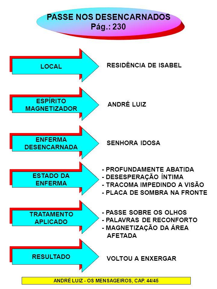 PASSE NOS DESENCARNADOS Pág.: 230 LOCAL ANDRÉ LUIZ - OS MENSAGEIROS, CAP. 44/45 ESPÍRITO MAGNETIZADOR ESPÍRITO MAGNETIZADOR ENFERMA DESENCARNADA ENFER
