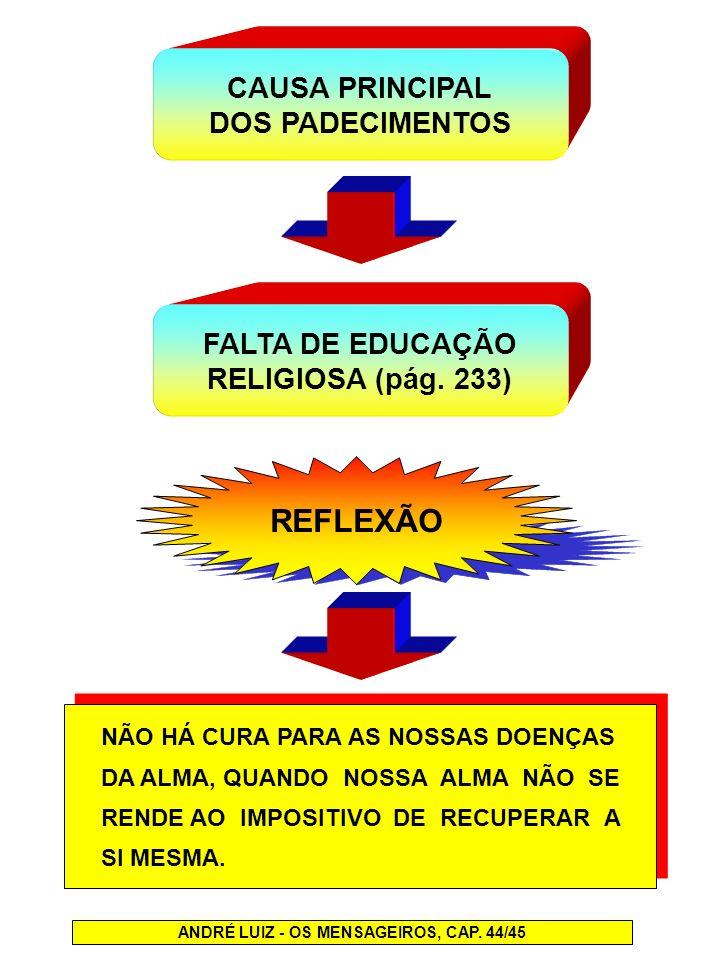REFLEXÃO CAUSA PRINCIPAL DOS PADECIMENTOS FALTA DE EDUCAÇÃO RELIGIOSA (pág. 233) NÃO HÁ CURA PARA AS NOSSAS DOENÇAS DA ALMA, QUANDO NOSSA ALMA NÃO SE