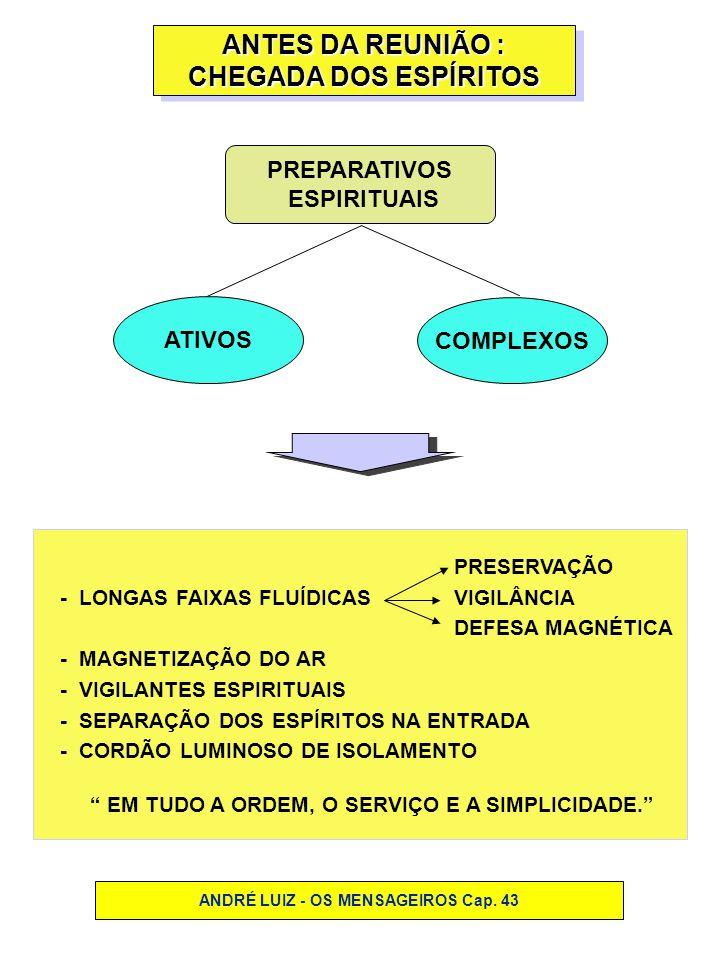 OS TRABALHADORES ESPIRITUAIS OS TRABALHADORES ESPIRITUAIS ENTIDADES DE VIDA MENTAL NOBRE ENTIDADES DE VIDA MENTAL NOBRE PROFESSORES MÉDICOSENFERMEIROS AUXILIARES - LUZ - ESPERANÇA - PAZ - OTIMISMO - BELEZA - ALEGRIA - SIMPATIA ANDRÉ LUIZ - OS MENSAGEIROS Cap.