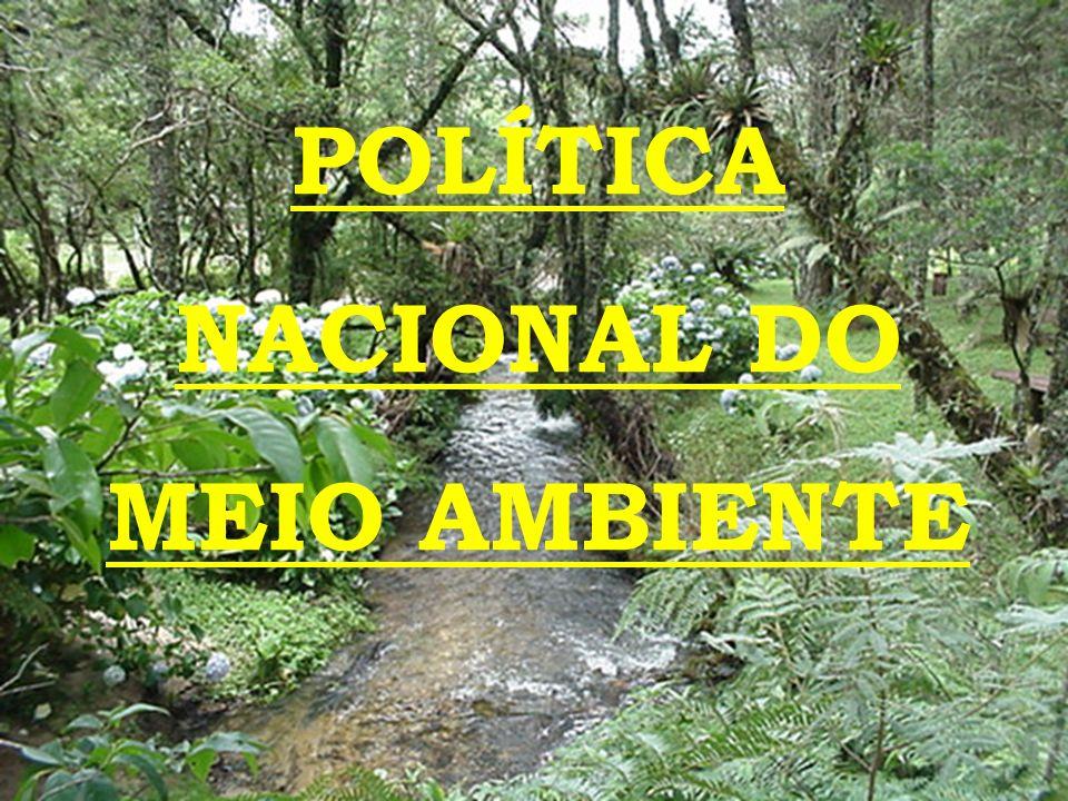 ÓRGÃOS LOCAIS - Órgãos ou entidades municipais responsáveis pelo controle e fiscalização dessas atividades nas respectivas áreas.