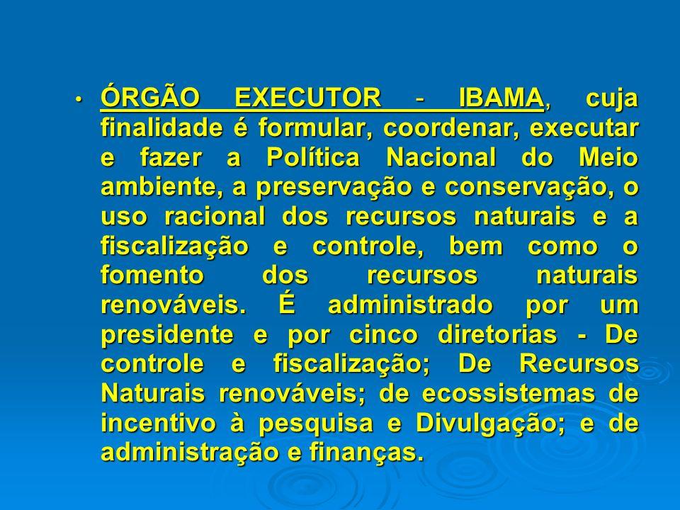 ÓRGÃO CENTRAL - Ministério do Meio Ambiente e após, Secretaria Especial do Meio Ambiente da Presidência da República - SEMAM/PR - Instituída pela Lei