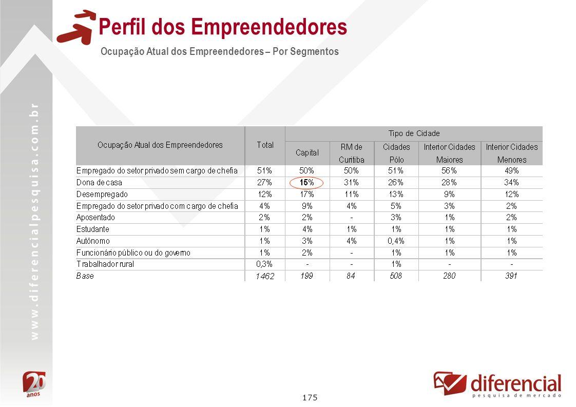 175 Perfil dos Empreendedores Ocupação Atual dos Empreendedores – Por Segmentos