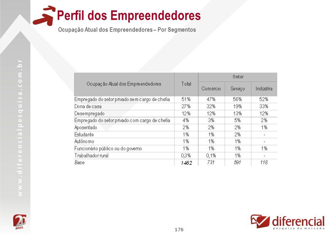 176 Perfil dos Empreendedores Ocupação Atual dos Empreendedores – Por Segmentos