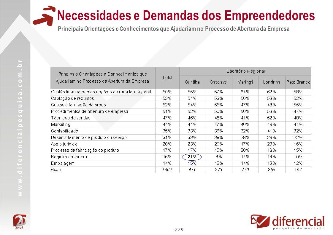 229 Necessidades e Demandas dos Empreendedores Principais Orientações e Conhecimentos que Ajudariam no Processo de Abertura da Empresa
