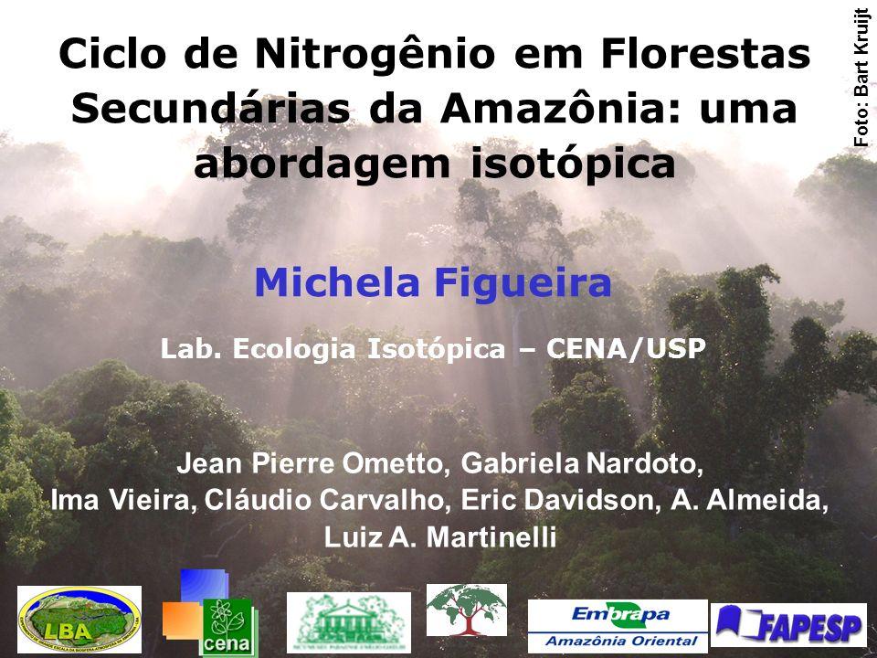 Fisionomias amostradas: Áreas de florestas secundárias com uso anterior exclusivo por agricultura de subsistência (roça e queima).