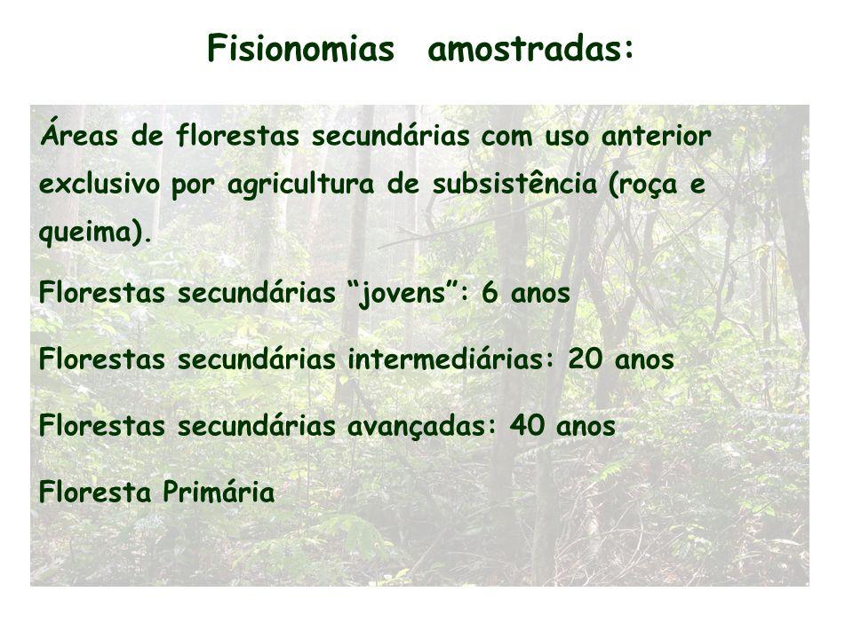 Fisionomias amostradas: Áreas de florestas secundárias com uso anterior exclusivo por agricultura de subsistência (roça e queima). Florestas secundári
