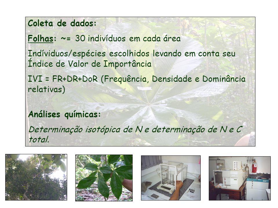 Coleta de dados: Folhas: ~= 30 indivíduos em cada área Indíviduos/espécies escolhidos levando em conta seu Índice de Valor de Importância IVI = FR+DR+