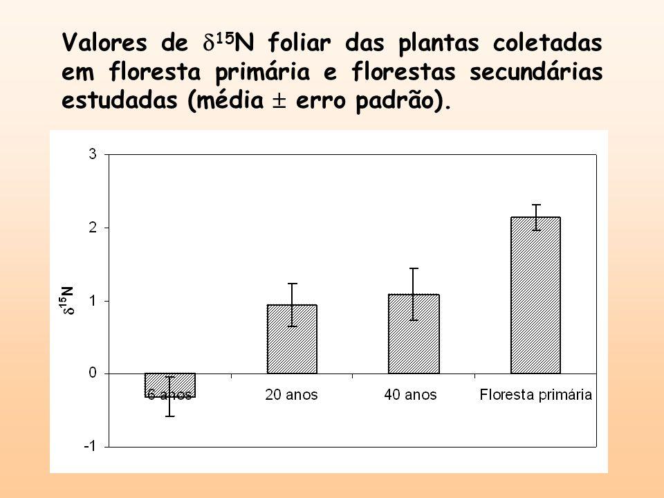 Valores de 15 N foliar das plantas coletadas em floresta primária e florestas secundárias estudadas (média erro padrão).